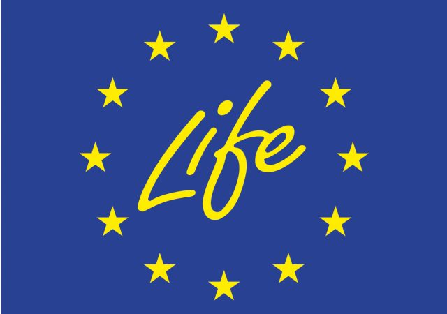 Two newly approved Transfer projects from LIFE 2015 call about to begin