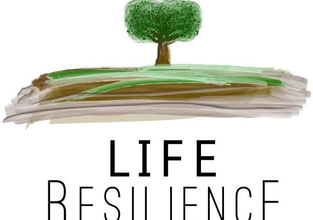 TRANSFER Consultancy joins the LIFE Resilience team