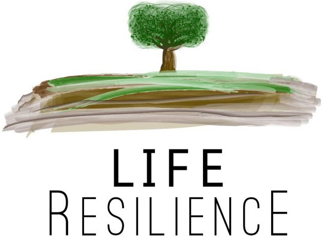 La consultora TRANSFER Consultancy se une al equipo de LIFE Resilience