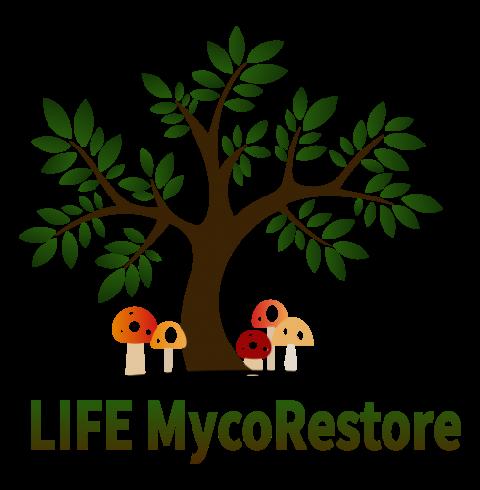 MYCORESTORE